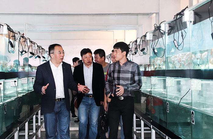 """2018年4月,中国龙鱼协会第一次常务理事扩大会议在广东清远召开。山西帝龙渔业总负责人范则萍先生在本次会议中,正式任职为中国龙鱼协会副会长,持续为中国龙鱼事业做出更大的贡献。  2018年6月,中国龙鱼协会第二次常务理事扩大会议在安徽合肥成功召开!山西帝龙渔业作为中龙协常务事业单位,其负责人范则萍先生前来参加此次会议。 2018年8月, 山西帝龙渔业在东北三省组织帝龙鱼友交流会,8月全国巡回鱼友见面会于沈阳站圆满成功。 2018年9月,山西帝龙渔业联合龙巅举办了""""帝龙杯""""网络大赛,参加鱼只数量150尾,代表了网络大赛的最高水准。 2018年10月,范则萍先生荣获改革开放40周年水族行业新锐人物称号。"""