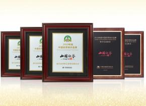 連續11年榮獲中國優秀特許品牌